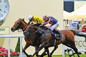 Big Orange; James Doyle; win the Group 1 Gold Cup; Royal Ascot; Ascot; UK 6/22/17; photo by Mathea Kelley