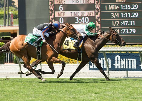 Sircat Sally Remains Undefeated With Honeymoon Win