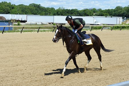 Epicharis at Belmont Park June 3