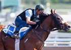 Gormley worked alone for the first time for trainer John Shirreffs June 3 at Santa Anita Park