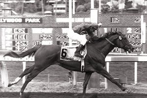 Precisionist, with Chris McCarron up, wins the 1984 Swaps Stakes at Hollywood Park