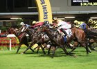 Record Season for Hong Kong Racing