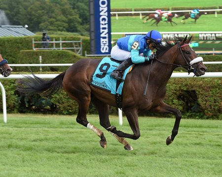 Miss Ella wins the July 24 Caress Stakes at Saratoga