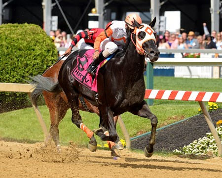 Ben's Cat with Julien Pimentel wins the Jim McKay Stakes at Pimlico  in Baltimore, Md., on May 16, 2014.
