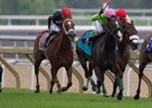 No Sure Favorite in Woodbine's Royal North Stakes