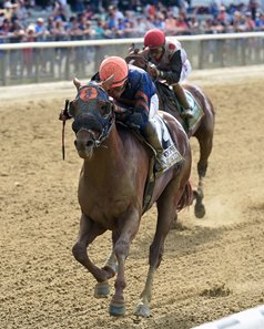 Mind Your Biscuits wins the Belmont Sprint Championship July 8, his most recent start