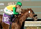 Om Will Carry Emotion, Hope in American Stakes
