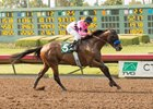 West Coast Gets Running Late in Los Alamitos Derby Win