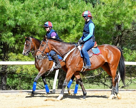 Liz Currey Silva on Llamame (left, on rail) and Mary Motion on the pony, Under Control (BRZ). Scenes at Fair Hill Training Center in Fair Hill, Maryland. May 16, 2017 Fair Hill Training Center in Fair Hill, Maryland.