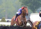 Swansea Mile clears a fence during the A. P. Smithwick