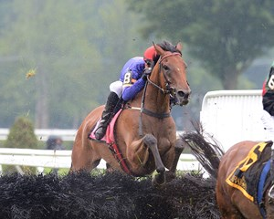 Upset A.P. Smithwick Memorial Steeplechase Stakes winner Swansea Mile will face Modem again in the Lonesome Glory Handicap