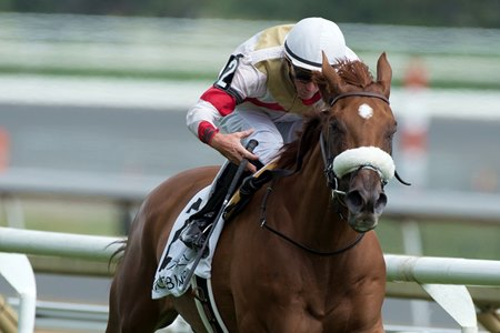 Dragon Bay wins the Nijinsky Stakes at Woodbine