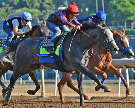 Arrogate - Santa Anita, July 15, 2017