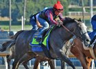 Arrogate works July 15 at Santa Anita Park