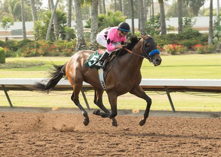 West Coast and jockey Drayden Van Dyke win the G3, $200,000 Los Alamitos Derby, Saturday, July 15, 2017 at Los Alamitos Race Course, Cypress Ca.