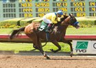 Baffert-trained Zulfikhar Delivers in Debut