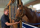 Arnaud Delacour and A. P. Indian in Delcaour's barn at Fair Hill Training Center