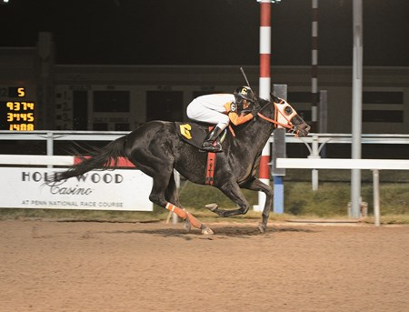 Ben's Cat wins the $200,000 Fabulous Strike Handicap at Penn National on November 29, 2014.