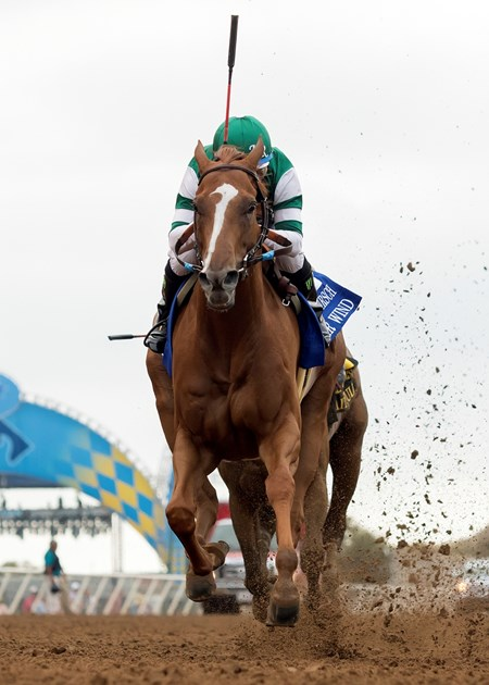 Stellar Wind wins the 2017 Clement L. Hirsch Stakes (G1)
