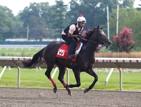 McCraken, with exercise rider Adelso Orantes riding, gallops on the track during morning workouts at Monmouth Park in Oceanport, New Jersey on Friday July 28, 2017.