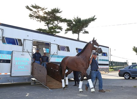Battle of Midway arrives at Monmouth Park for the 2017 Haskell Invitational (G1)