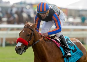 Madam Dancealot will take on 13 rivals in the Del Mar Oaks