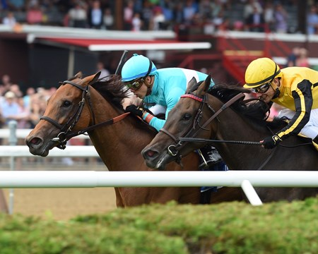 Lady Eli wins the 2017 Diana Stakes