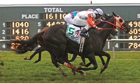 Ben's Cat #5 with Julian Pimentel riding edged out Chamberlain Bridge #11 with Paco Lopez and Great Mills with Frankie Pennington third in the $350,000 Grade III Turf Monster Handicap at Parx Racing in Bensalem, PA on Monday September 3, 2012.