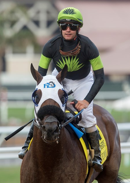 Jockey Flavien Prat guides Ransom the Moon to the winner's circle after their victory in the Grade I, $300,000 Bing Crosby Stakes, Saturday, July 29, 2017 at Del Mar Thoroughbred Club, Del Mar CA.