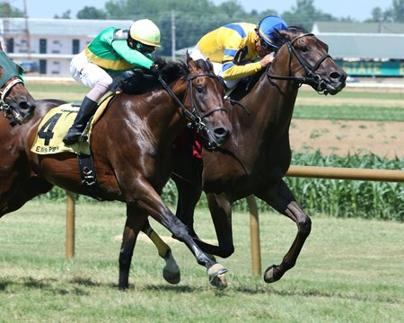 D C Nine (inside) breaks his maiden July 2 at Ellis Park