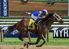 Horse of the Year Rachel Alexandra's half brother Fayeq posted a 3 1/2-length victory July 26 at Saratoga