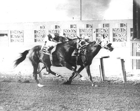 Arrogate wins the 1956 Del Mar Handicap
