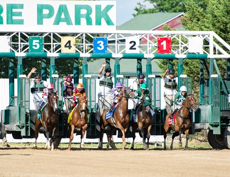 The field for the Delaware Handicap(gr.I) breaking out of the gate on July 15th, 2017 at Delaware Park