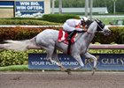 Conquest Big E wins Gulfstream's Coast is Clear Handicap July 23