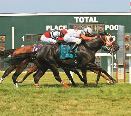 Ben's Cat #9 with Julian Pimentel riding won the $200,000 Parx Dash at Parx Racing in Bensalem, Pennsylvania July 12, 2014.  Photo By Barbara Weidl / EQUI-PHOTO