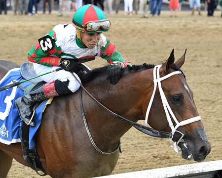 Firenze Fire wins the 2017 Sanford Stakes