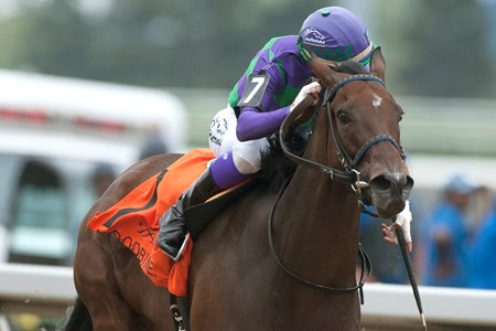Luis Contreras guides Ami's Mesa to victory in the 2017 Ontario Matron Stakes