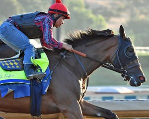 Abel Tasman working in July at Santa Anita