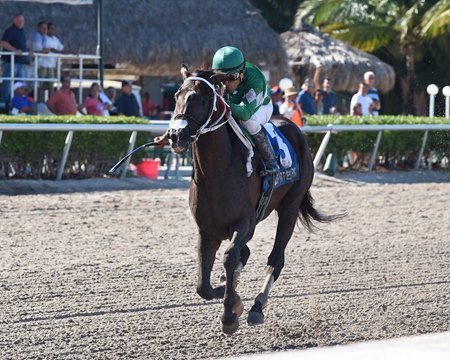 Three Rules last raced July 1, when he took the Carry Back Stakes at Gulfstream Park