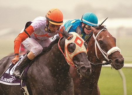 Ben's Cat wins the Laurel Dash Stakes at Laurel Park on September 21, 2013.