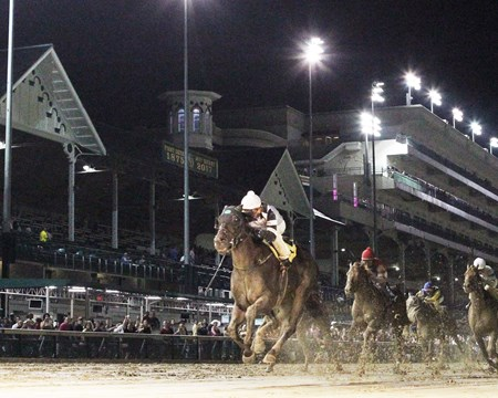 Limousine Liberal wins the 2017 Kelly's Landing