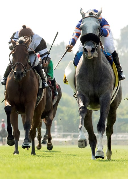 Nick Alexander's Enola Gray and jockey Flavien Prat, right, outleg Prize Exhibit (Santiago Gonzalez), left, to win the 2017 Wilshire Stakes, Saturday, July 1, 2017 at Santa Anita Park, Arcadia CA.