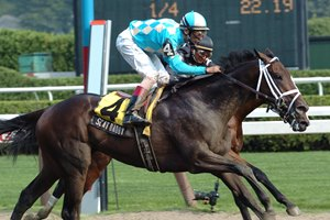 Scat Daddy is one of three Sanford Stakes winners for owner James Scatuorchio.