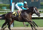 "Scat Daddy caught Teuflesberg late to win the Sanford Stakes.<br><a target=""blank"" href=""http://www.bloodhorse.com/horse-racing/photo-store?ref=http%3A%2F%2Fpictopia.com%2Fperl%2Fgal%3Fgallery_id%3D6823%26process%3Dgallery%26provider_id%3D368%26ptp_photo_id%3D452068%26sequencenum%3D%26page%3D"">Order This Photo</a>"