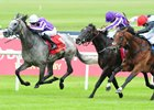 Even Dozen: Capri Gives O'Brien 12th Irish Derby Win