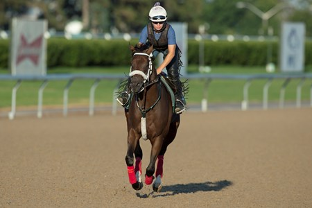 Cool Catomine - Woodbine, August 19, 2017