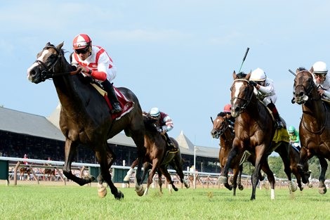 Bricks And Mortar Stands Tall In Belmont S Hill Prince