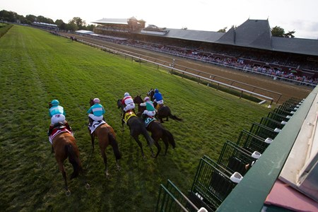 The field leaving the starting gate in the Woodford Reserve Ballston Spa at Saratoga on August 26, 2017