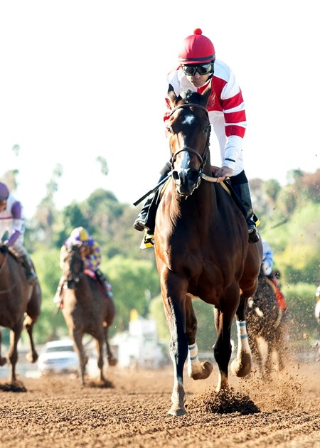 Fox Hill Farms' Songbird and jockey Mike Smith win the Grade II, $300,000 Las Virgenes Stakes, Saturday, February 6, 2016 at Santa Anita Park, Arcadia CA.