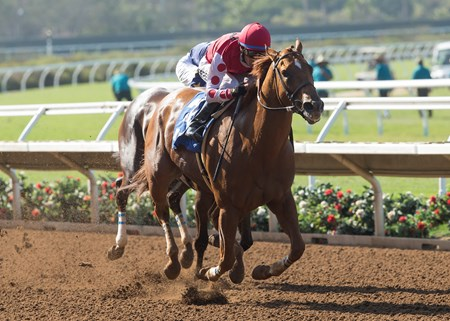 Skye Diamonds wins the 2017 Rancho Bernardo Handicap (G3)